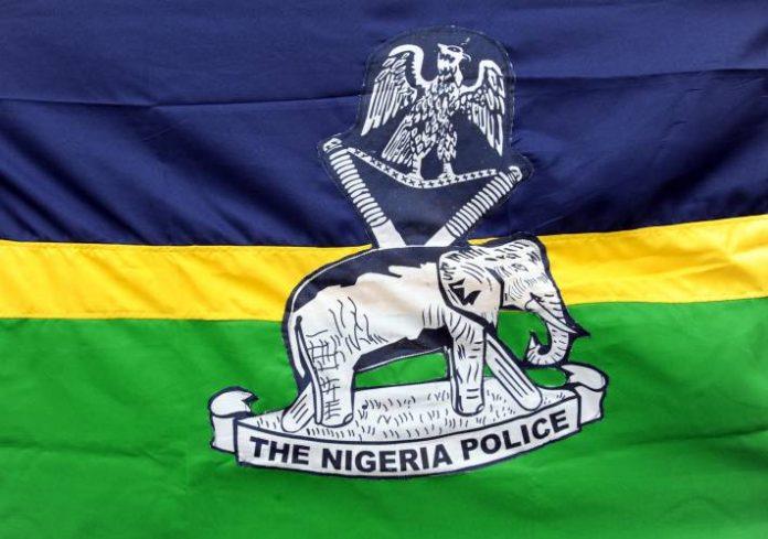 nigeria-police-force-696x489